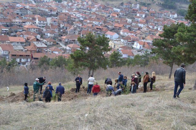 """Општина Кочани обезбеди илјада  садници по барање на Граѓанската иницијатива """"За чист воздух"""" од Кочани"""