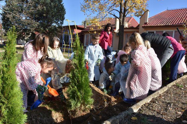 """Децата од  градинката """"Павлина Велјанова"""" засадуваа дрвца"""