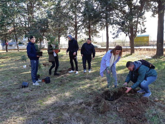 """Учениците од """"Гошо Викентиев"""" засадуваа дрвца"""