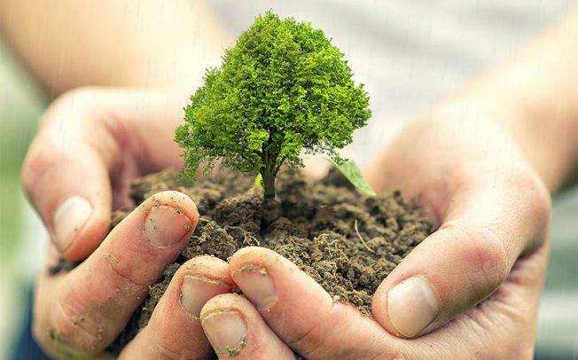 """""""Засади иднина"""" во организација на Граѓанската иницијатива """"За чист воздух"""" од Кочани"""