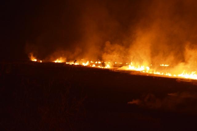 Кочанското поле во пламен –  неодговорноста на  земјоделците  на дело