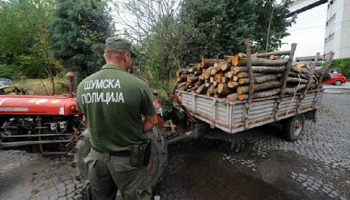 Дрвокрадци нападнале шумски полицајци во Кочани
