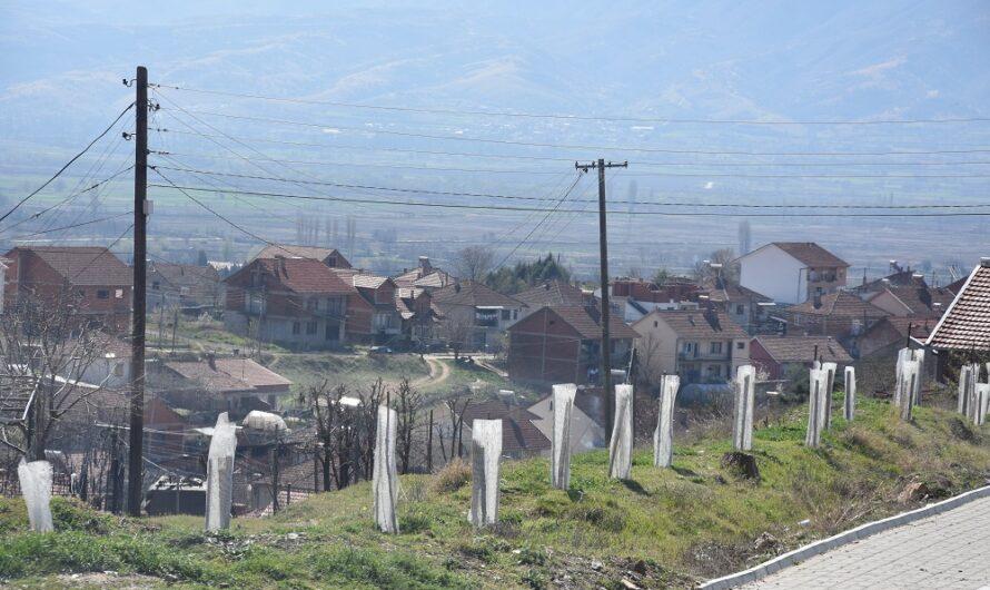 Нова еколошка акција – засадени 300 багреми во населбата Усова Чешма