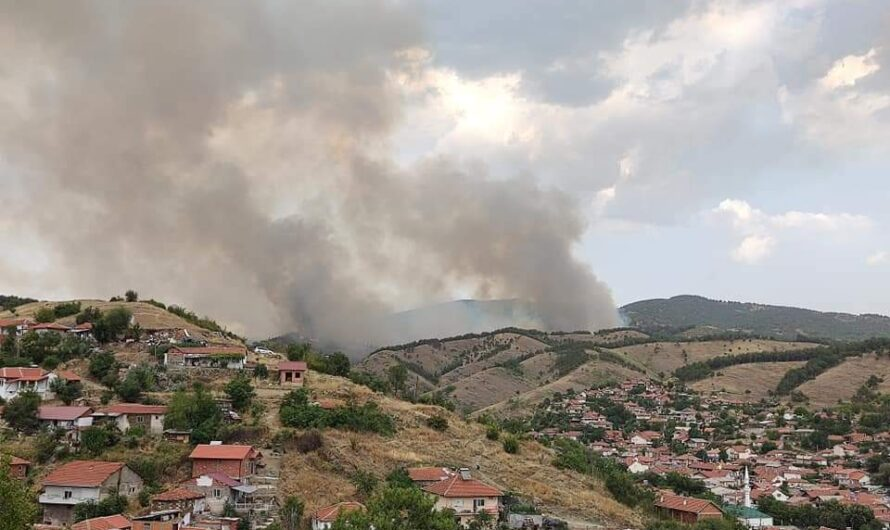 Локализиран пожарот над Кочани, пожарот кај Тркање сѐ уште активен