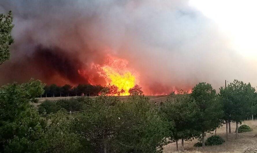 Можен прекин на водоснабдувањето, од Фабриката за вода се полнат противпожарните возила кои интеревенираат во гаснењето на пожарот