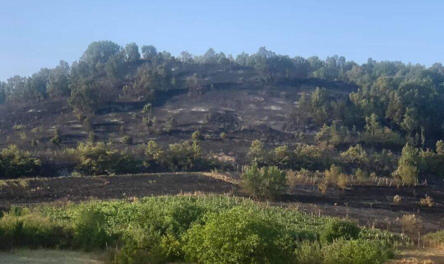 Општина Кочани: Локализиран пожарот кај Тркање, хеликоптери дејствуваат во атарот на селата Костин Дол и Ново Село